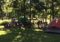 华夏学人协会成功举办春季露营和钓鱼活动